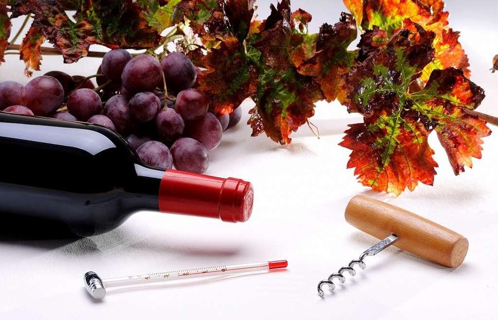 Температурний аспект подачі вина