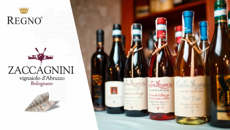 Дегустації вин бренду Zaccagnini. Фотозвіт.